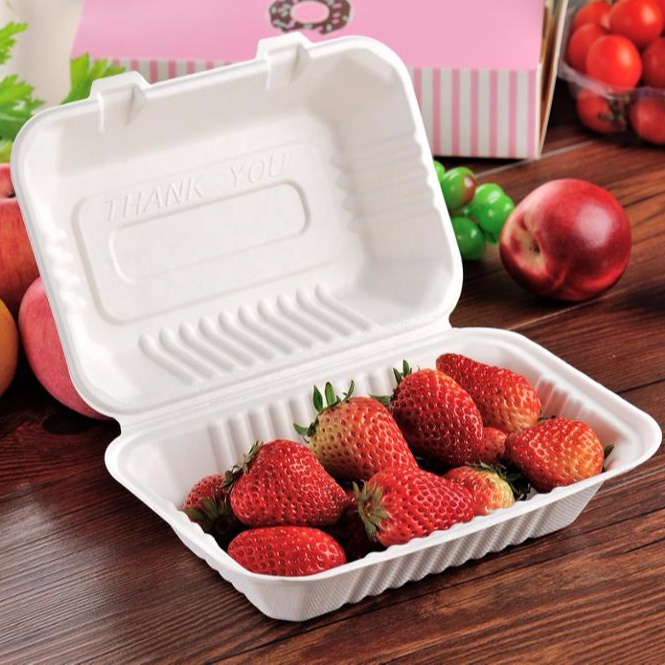 Eco-friendly-disposable-biodegradable-lunch-box-with 6